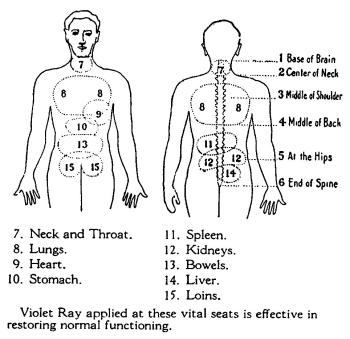 Early american energy medicine location of vital organs ccuart Image collections